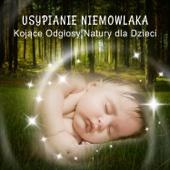Usypianie Niemowlaka: Kojące Odgłosy Natury dla Dzieci – Kołysanki do Snu dla Dzieci i Dorosłych, Spokojny Bobas, Głęboki Sen, Biały Szum, Muzyka Relaksacyjna