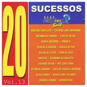 20 Sucessos Somzoom, Vol: XIII