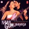 Hamein Tumse Hai Pyar (Instrumental)