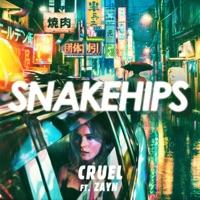 Snakehips - Cruel (feat. ZAYN)