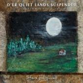 Steve Baughman - O'er Quiet Lands Suspended artwork