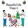 Beautiful Life - Single