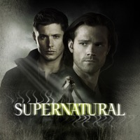 Supernatural, Season 11 (iTunes)