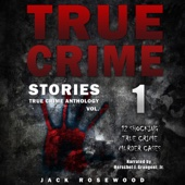 True Crime Stories: 12 Shocking True Crime Murder Cases: True Crime Anthology, Vol. 1 (Unabridged) - Jack Rosewood Cover Art