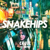 Snakehips - Cruel (feat. ZAYN) artwork