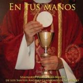 Seminario Pontificio Mayor de Santiago - Salmo 91 ilustración