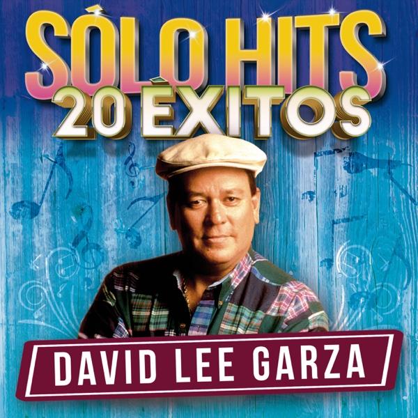 David Lee Garza - Sólo Hits