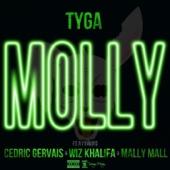 Tyga - Molly (feat. Cedric Gervais, Wiz Khalifa & Mally Mall) artwork