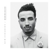Kim Cesarion - Undressed artwork
