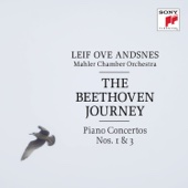 Concerto for Piano and Orchestra No. 1 in C Major, Op. 15: III. Rondo. Allegro - Leif Ove Andsnes & Mahler Chamber Orchestra