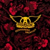 Permanent Vacation, Aerosmith