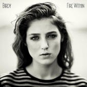 Fire Within cover art
