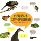 Formosan Bulbul
