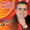 Best Of, Adrian Minune