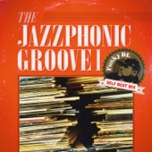 The Jazzphonic Groove 1 (Funky DL Self Best Mix) cover art