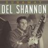 Runaway - Single, Del Shannon