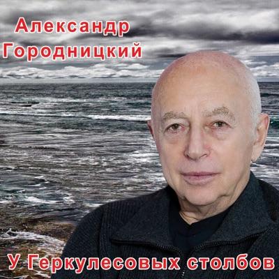 ГОРОДНИЦКИЙ Александр - Донской Монастырь
