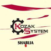 Kozak System - Pro Andrija artwork