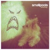 Dreaming - Smallpools
