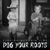 Dig Your Roots - Florida Georgia Line Cover Art