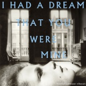 I Had a Dream That You Were Mine - Hamilton Leithauser + Rostam