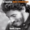 The Essential Bruce Springsteen (Bonus Tracks), Bruce Springsteen