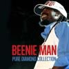 Beenie Man Pure Diamond Collection