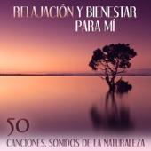 Relajación y Bienestar para Mí: 50 Canciones - Remedios para la Ansiedad, Música para Meditar e de Relax, Sonidos de la Naturaleza - Relajación Meditar Academie