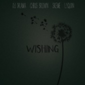 Wishing (feat. Chris Brown, Skeme & Lyquin) - DJ Drama