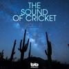 The Sound of Cricket, Vol. 11 - EP - Big Band, Big Band