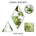 Clean Bandit Tears