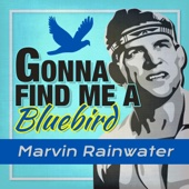 Gonna Find Me a Bluebird (Rerecorded) - Marvin Rainwater