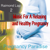 Pregnancy Paradise 2 (Music For A Relaxing and Healthy Pregnancy)