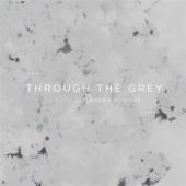 Landon Pontius - Through the Grey  artwork