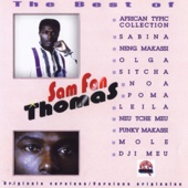 Sam Fan Thomas - African Typic Collection artwork