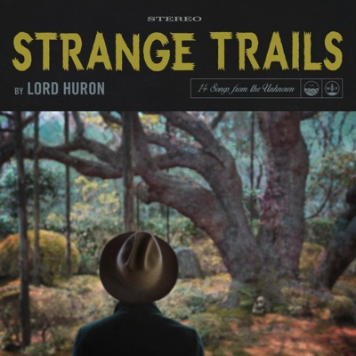 The Night We Met - Lord Huron song