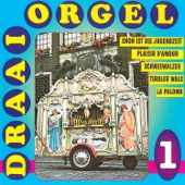 20 Draaiorgel Sucessen, Vol. 1
