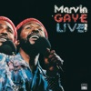 Live!, Marvin Gaye