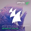 Never Let You Go (feat. BullySongs) [Manse Remix]