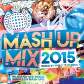 Various Artists - Mash Up Mix 2015 - Ministry of Sound  artwork