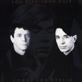 It Wasn't Me - Lou Reed & John Cale