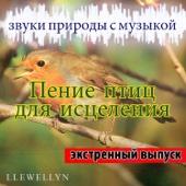 Пение птиц для исцеления - Звуки природы с музыкой - Экстренный выпуск