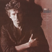 The Boys of Summer - Don Henley