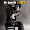 The Essential Donovan