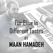 Maan Hamadeh - Für Elise in Different Tastes artwork