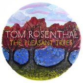 It's Ok - Tom Rosenthal