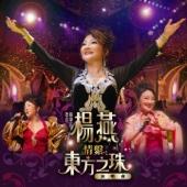 楊燕情繫東方之珠演唱會