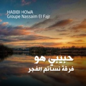 Groupe Nassaim El Fajr - Ya Man artwork