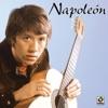 Napoleon, Napoleon