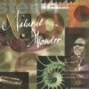Natural Wonder, 1995